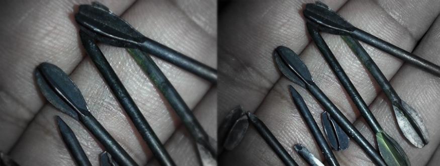shell_nails